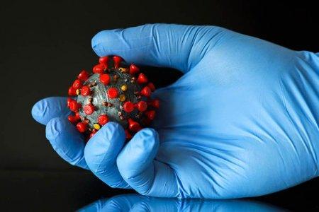 В России появится съедобная вакцина от коронавируса
